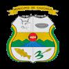 CAUCASIA-WEB